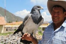 Peru113