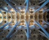 Sagrada Familia - ceiling