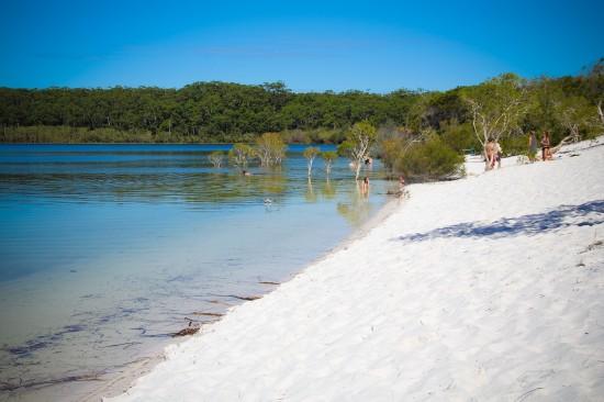 Fraser Island-Lake Mackenzie