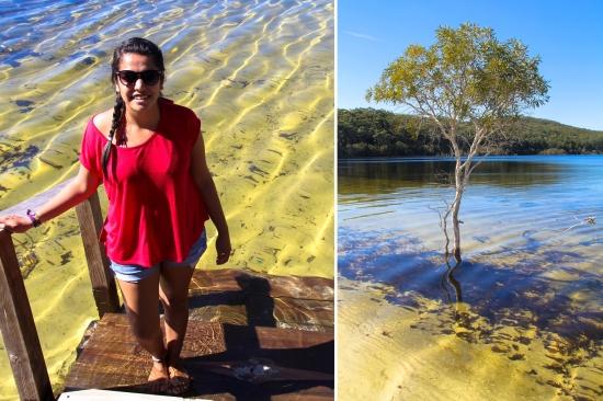 Fraser Island-Lake Mackenzie1