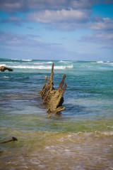 Fraser Island-Shipwreck