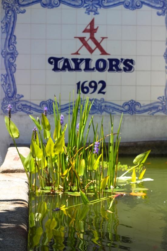 Taylor's Port Porto